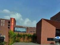 深圳艺术学校开设有哪些专业