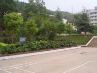 古蔺职业高级中学校网站网址