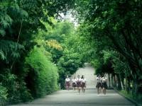 重庆女子职业高级中学2020年招生录取分数线