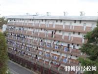 云南化工学校2020年报名条件、招生对象