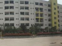 湖南外贸职业学院2021年招生计划