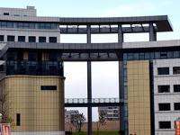 安徽金寨职业学校2020年招生录取分数线