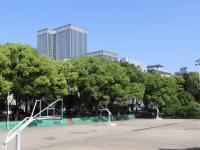 湖南网络工程职业学院2021年招生计划