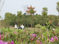 湖南汽车工程职业学院2020年招生简章