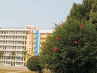 深圳新南方技工学校2020年招生录取分数线