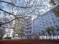 武汉体育舞蹈学校怎么样、好不好
