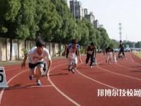 海盐县商贸学校2020年招生录取分数线