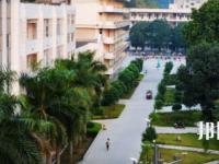 广西右江民族商业学校2020年报名条件、招生要求、招生对象