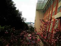 重庆万州技师学院2020年招生计划