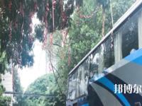 南宁信息工程职业技术学校2020年报名条件、招生要求、招生对象